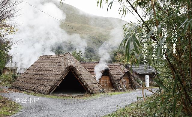 別府温泉 湯の花栽培